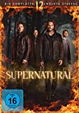Supernatural Staffel 12 (6 DVDs)