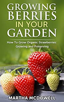 Growing Berries In Your Garden - How To Grow Organic Strawberries: Growing And Preserving: Preserve Strawberries, Canning, Grow Organic, Diabetes Cure, ... Indoor, Grow Strawberries) (English Edition) von [McDowell, Martha]