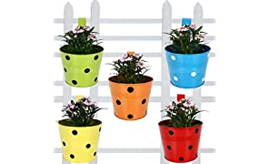 Trust basket Single Pot Railing Planter, Set of 5 (Red, Yellow, Blue, Orange, Green)