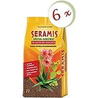 Oleander Hofmeister® Bajo Juego: 6x seramis® especial de sustrato para Cactus y crasas, 7litros + Gratis Adelfas Hofmeister Flyer