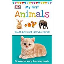My First Touch And Feel Picture Cards