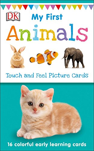 My First Touch And Feel Picture Cards por Vv.Aa