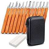 Wood Carving Tool Set, NASUM 12 Piece Wood Carving Knife and 3 Sharpening Stones for Wood, Fruit, Vegetables, Carving DIY, Sculpture and Wax