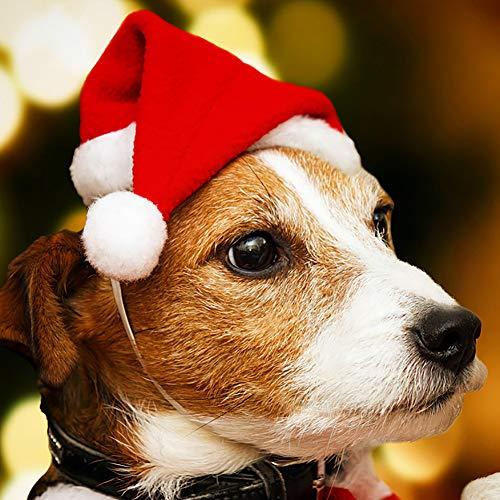 BonTime 1pc Haustier Weihnachten Hut Hund Cute Santa Weihnachten Xmas Red Holiday Kostüm Kleinen Hut