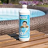 Clearwater CH0006 Algaecide for Swimming Pool and Spa Treatment, 1 Litre