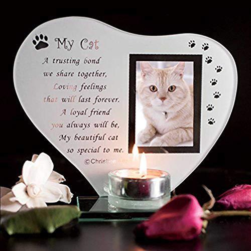 Spezielle Katze Andenken Grab Memorial Glas Ornament Katze Plaque Gedicht Kerze Fotohalter -