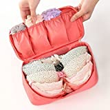 Flipco Multifunctional Bra Underwear Organizer Bag Slide Portable Cosmetic Makeup Lingerie Toiletry Travel Bag With Handle (Colour May Vary)