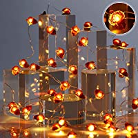 10ft 30 LED String Lights Battery Powered with 8 Flicker Modes, Remote and Timer for Fall, Halloween, Thanksgiving, Wedding, Birthday Parties, DIY Home Mantel Decoration