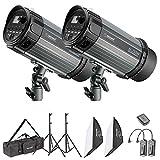 Neewer Kit d'Illuminazione Flash Strobo & Softbox: (2) Monoluce Flash 250W, (2) Cavalletto, (2) Softbox, (1) RT-16 Trigger, (1) Borsa di Trasporto, per Video Fotografia in Esterni & Ritratti
