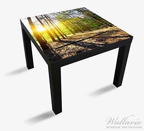 Wallario Möbeldesign / Aufkleber, geeignet für Ikea Lack Tisch - Sonnenstrahlen tief hinter dem Wald in 55 x 55 cm (Kiefern-aufkleber)