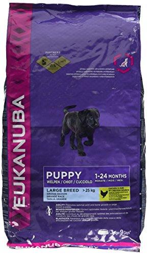 Eukanuba puppy e Junior Large Breed cibo (Iams Large Breed Puppy)
