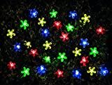 MP Essentials Outdoor 100 LED Solar Multi-Coloured Flower String Lights