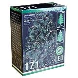 Multistore 2002 Lichterkette mit 171 LEDs warmweiß für Tannenbäume bis 180cm / Innen & Außen
