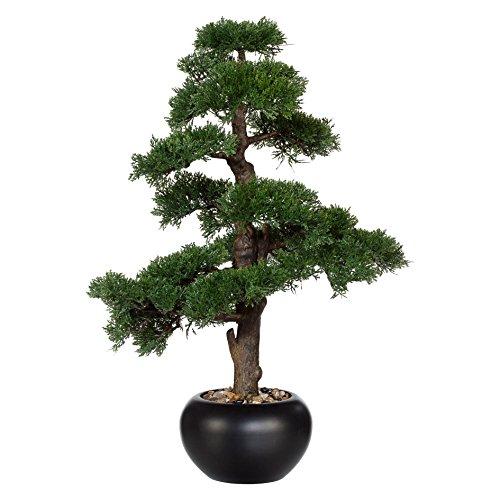 wohnfuehlidee Kunstpflanze Bonsai Zeder grün, mit schwarzem Keramik-Topf, Höhe ca. 65 cm