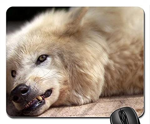 Arctic teeth Mouse Pad, Mousepad (Dogs Mouse Pad)