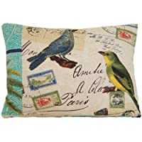 Uccelli, stile Vintage, Federa per cuscino decorativo, motivo: cartolina di
