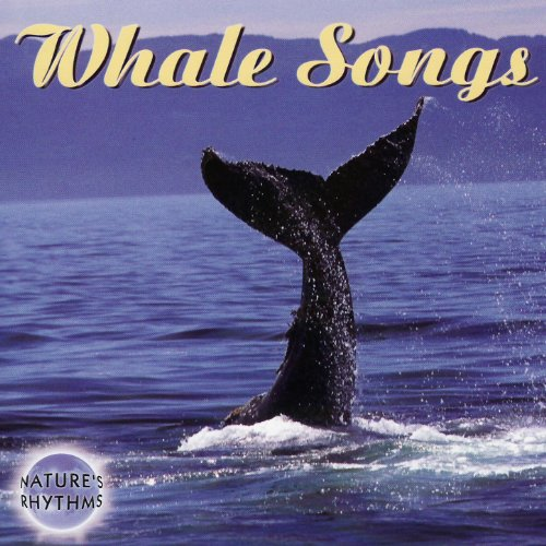 Nature's Rhythms - Whale Songs