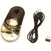 Mouse ottico wireless USB reale Manchurian Scorpion Insetti PC rotella