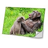 Affen 10008, Schimpanse, Skin-Aufkleber Folie Sticker Laptop Vinyl Designfolie Decal mit Ledernachbildung Laminat und Farbig Design für Laptop 14