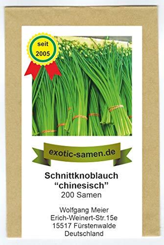 Schnittknoblauch, chinesisch - Allium tuberosum (200 Samen) (Samen Chinesische)