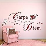 WANDTATTOO AA096 Wandschnörkel ® CARPE DIEM Spruch Wanddekoration Schlafzimmer Wohnzimmer Flur Diele Farbe./Größenauswahl Wandaufkleber