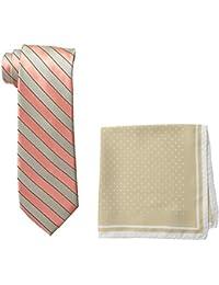 Steve Harvey Men's Satin Stripe Woven Necktie and Dot Pocket Square