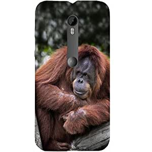 Casotec Orange Gorilla Design Hard Back Case Cover for Motorola Moto G 3rd Generation