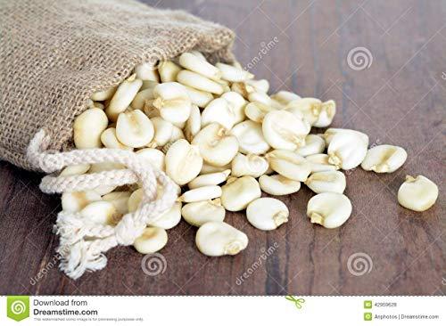 Weisser Mais – Zuckermais – 10 Samen – sehr süßer asiatischer Maissamen