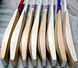 Best English Willow Cricket Bats - Wonberry Plain Big Edge Big Spine English Willow Review