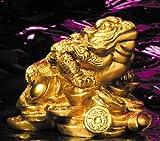 Trípode Papelera Dinero Rana de latón, 10,5cm x 9cm, Prosperidad, Feng Shui, amuleto de la suerte