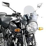 SPEZIFISCHES WINDSCHILD A200 A4124A Kawasaki Z 900 RS 2019 FUMÈ Moto GIVI