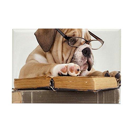 CafePress–Wasserspeier English Bulldog in Glas–Rechteck Magnet, 5,1x 7,6cm Kühlschrank Magnet