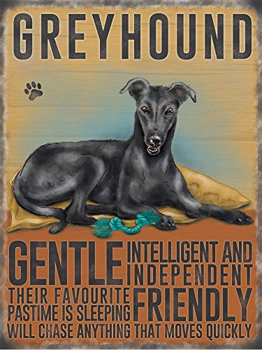 black-greyhound-wind-hund-targa-placca-metallo-stabile-piatto-nuovo-30x40cm-vs4634-1