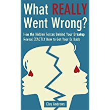 What Really Went Wrong: How the Hidden Forces Behind Your Breakup Reveal Exactly How to Get Your Ex Back (English Edition)
