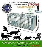 MEDICALMONO GABBIA TRAPPOLA PROFESSIONALE CON CHIUSURA VERTICALE - RINFORZATA E ZINCATA DI ALTA QUALITA' PER LA CATTURA DI volpi,lontre, castori,procioni,gatti CM 80x34x34