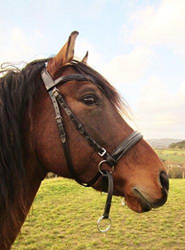 PS Pferdeartikel Weiche Gebisslose Zäumung - Trense anatomisch Tilia Größe Pony - Farbe Schwarz