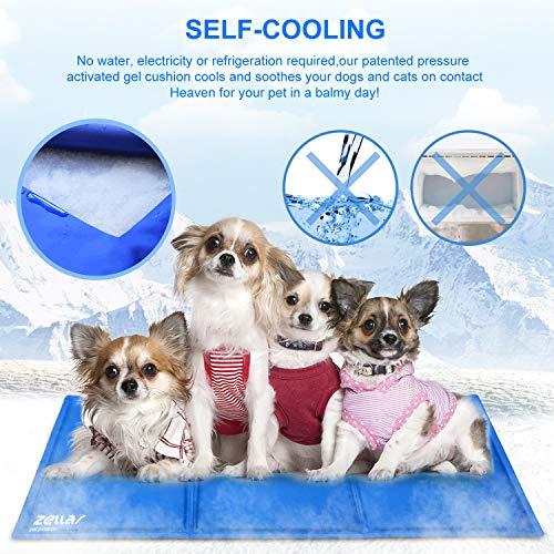 Zoom IMG-2 zellar tappetino rinfrescante per cani