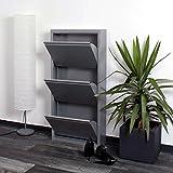 lifestyle4living Schuhkipper grau aus Metall hat 3 synchron öffnende Klappen, schmaler Schuhschrank ist 15 cm tief und bietet Platz für bis zu 9 Schuhe