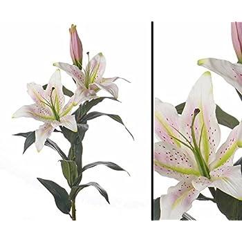 Amazon.de: Kunstblume Lilie \