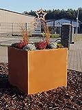 Jabo Design HO02 Hochbeet Pflanzengefäße Deko Rostdeko Edelrost Schale Blumen Taschen Skulptur Metall