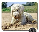 Mouse Pads - Golden Doodle Beach Ball Dog Play Water Beach Sea