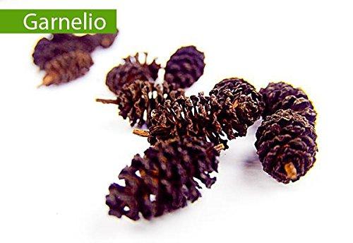 Garnelio - Erlenzapfen - 10 st. - Garnelen Futter