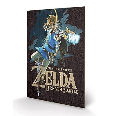 PYRAMID - Panneau en Bois Zelda BOTW Game Cover