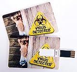 Witziger USB Stick im Visitenkartenformat, Scheckkarte, Kreditkarte, 4 GB, fieser Esel / Pferd