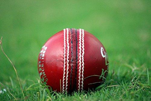 kimati Leder Cricket Ball für Profis, Goldy