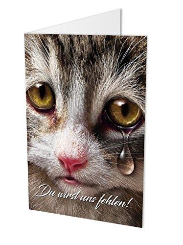 Tarjeta de despedida compañeros gato DIN A4con KUVERT, tarjeta plegable, de despedida con de compañeros o kollegin, aprobación, Ruhestand