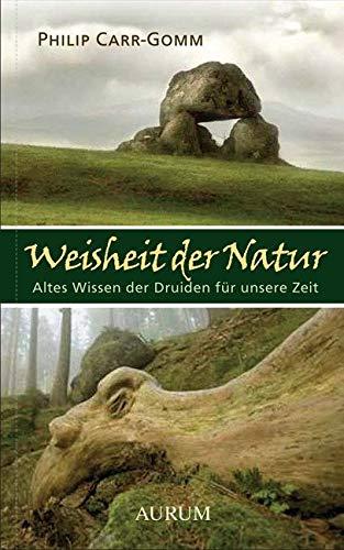 Weisheit der Natur: Altes Wissen der Druiden für unsere Zeit