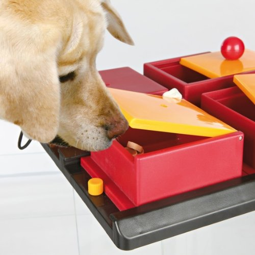 Trixie 32012 Dog Activity Poker Box Hundespielzeug, 31 × 10 × 31 cm - 4