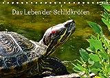 Das Leben der Schildkröten (Tischkalender 2019 DIN A5 quer): Einzigartige Reptilien: Land- und Wasserschildkröten (Monatskalender, 14 Seiten ) (CALVENDO Tiere)
