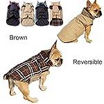IREENUO Dog Reversible Plaid Coat Autumn Winter Warm Cozy Waistcoat British Style Dog Padded Jacket for Small Medium… 16